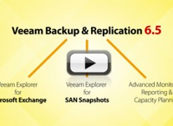 Veeam Backup & Replication v6.5