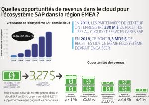 """Infographie « Ecosystème Cloud et services managés"""" SAP / IDC"""